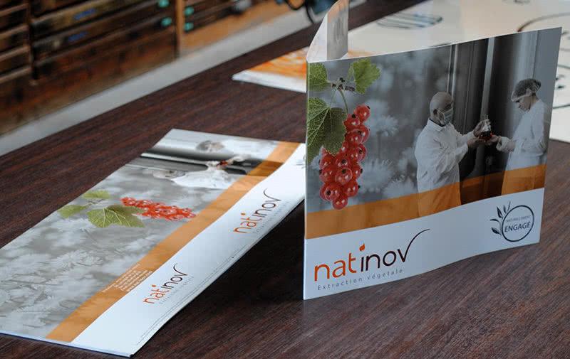 Plaquettes Natinov